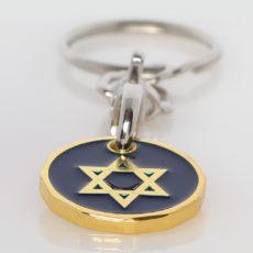 Zionist Jewish Star of David Supermarket Trolley Pound Coin Token