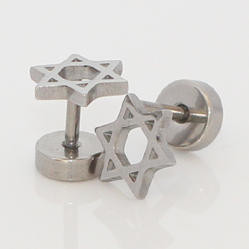 Silver Zionist Jewish Star of David stud earrings